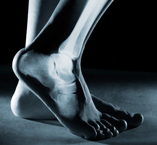 what is a licensed chiropodist